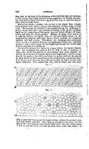 Página 752