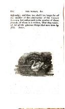 Página 242